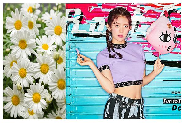 Những idol Hàn bị Google cho ra rìa nếu không đi kèm tên nhóm - 9