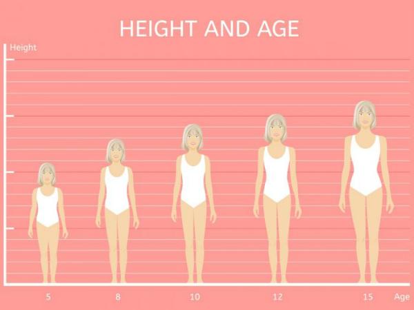 Tăng trưởng chiều cao trong tuổi dậy thì ở các bé gái từ 8 tuổi đến 19 tuổi.