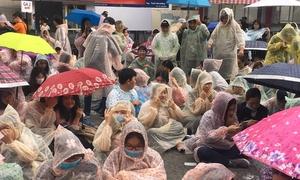 Fan Việt đội mưa, mừng quýnh khi gặp EXID và The Boyz ở cự ly siêu gần