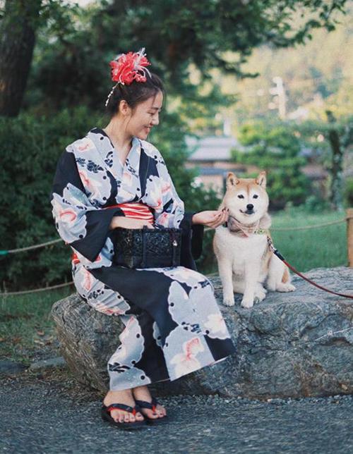 Diện kimono, ngồi chơi đùa với chó Shiba, Văn Mai Hương trông chẳng khác gì gái Nhật.