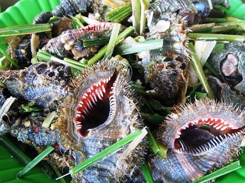 Chỉ có thánh ăn ốc mới phân biệt được các loại ốc này - 9