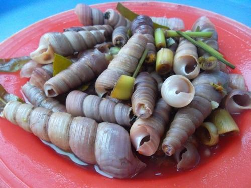 Thể hiện độ sành ăn bằng cách phân biệt các loại ốc biển - 3