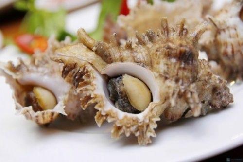 Thể hiện độ sành ăn bằng cách phân biệt các loại ốc biển - 4