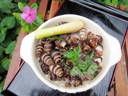 Thể hiện độ sành ăn bằng cách phân biệt các loại ốc biển - 8