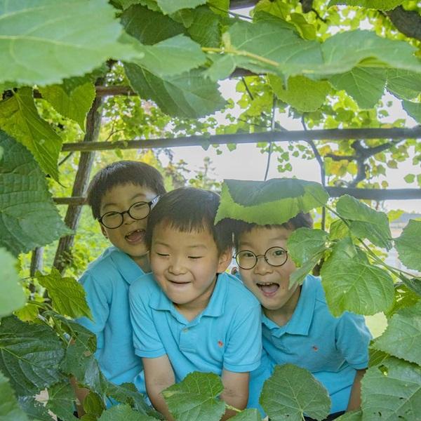 Bộ ba nhóc tỳ sinh ba nhà Song Il Gook khiến fan ôm tim vì quá đáng yêu.