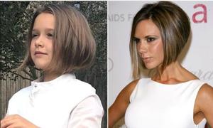 Cô út nhà Beckham 'chất chơi' khi cắt kiểu 'tóc Vic' giống mẹ