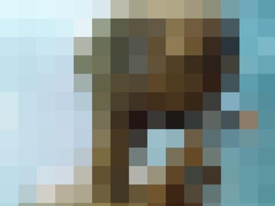 Đố bạn nhìn ra những bức ảnh bị làm nhòe này - 3