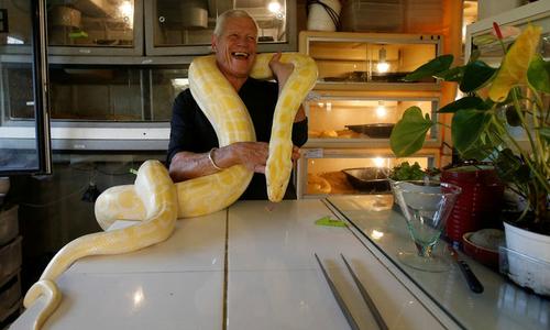Người đàn ông Pháp chung sống với một đàn rắn, cá sấu, thằn lằn
