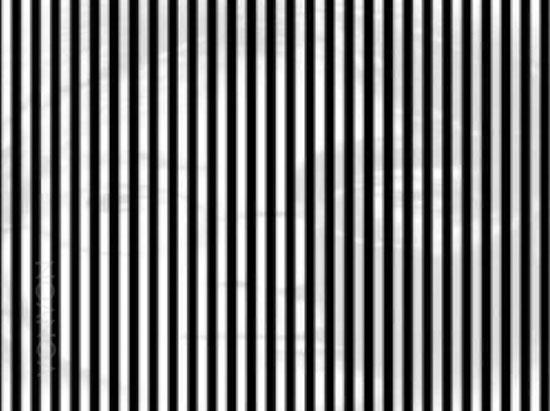 Đẳng cấp thượng thừa mới nhìn thấy dòng chữ trong ảnh ảo giác (3)