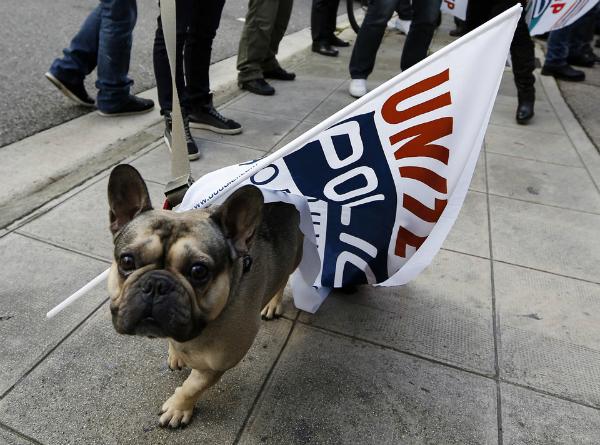 Cuộc diễu hành được diễn ra ngay tại thủ đô London.