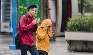 Người Hà Nội đón gió mùa về