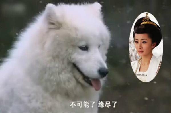 Khi phim Hoa ngữ lừa đảo khán giả: Son môi giả làm máu, thác nước làm từ nilon - 3