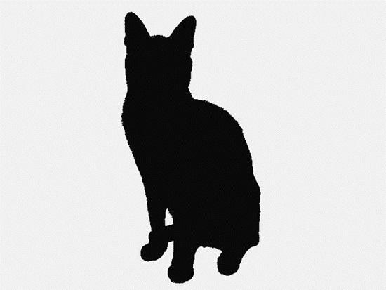 Nhìn bóng mèo cưng đoán giống loài (2) - 4
