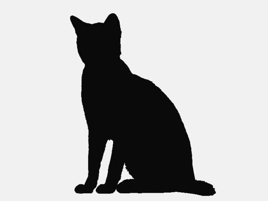 Nhìn bóng mèo cưng đoán giống loài (2) - 6