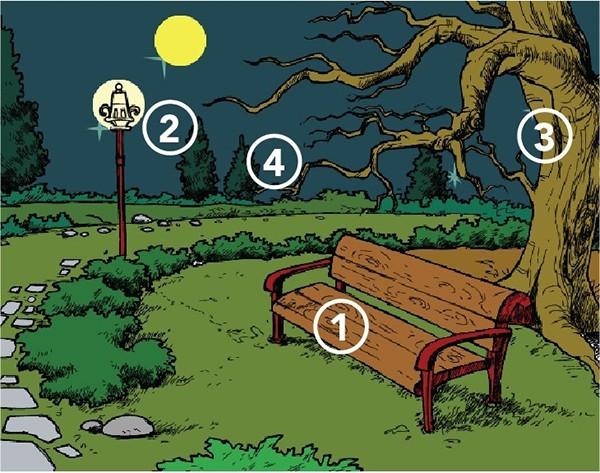 Trắc nghiệm: Tình huống đi lạc trong công viên sẽ hé mở bản chất thật của bạn