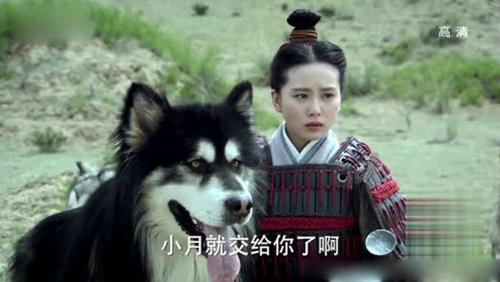 Những đạo cụ càng xem càng thấy sai của phim cổ trang Hoa ngữ - 9