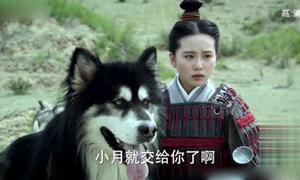 Những đạo cụ 'xem là phì cười' trong phim cổ trang Hoa ngữ