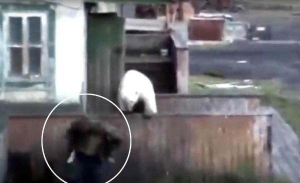 Gấu đói đi tìm thức ăn và đe dọa mạng sống của người dân.