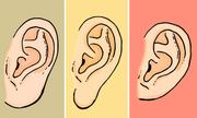 Bói vui: Xem dáng thùy tai để khám phá cá tính của bạn trong tình yêu