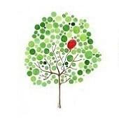 Trắc nghiệm: Dáng cây sắc màu nào có thể mở khóa bí mật về bạn? - 3