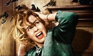 Những chuyện hậu trường kinh hoàng trở thành ác mộng của diễn viên
