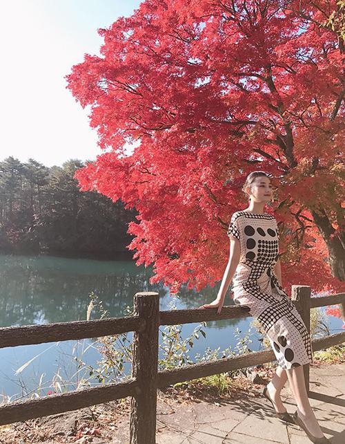 Lê Thúy khoe dáng chuẩn người mẫu bên hàng cây lá đỏ ở Nhật Bản.