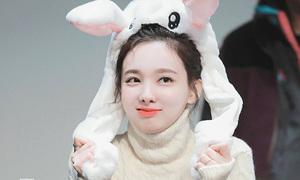 Idol Hàn đọ vẻ cute lạc lối với mũ thỏ ở buổi ký tặng