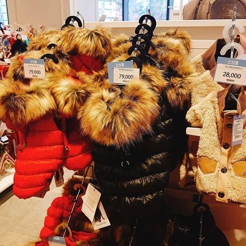 Người Hàn sẵn sàng bỏ số tiền lớn để mua quần áo đẹp và các phụ kiện khác cho chó. Chiếc áo khoác phao cổ lông trong hình có giá 79.000 won (khoảng 1,6 triệu đồng).
