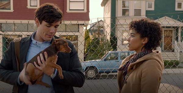 Chú cún Bella bị lạc khỏi người chủ thân thương của mình.