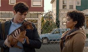 'A Dog's Way Home' - bộ phim về cún cưng tung trailer khiến khán giả muốn tan chảy