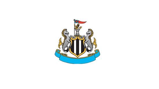 Nhận dạng các câu lạc bộ bóng đá Anh qua logo - 5