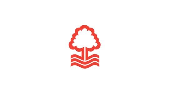 Nhận dạng các câu lạc bộ bóng đá Anh qua logo - 6