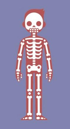Trắc nghiệm: Chọn bộ phận cơ thể quan trọng nhất để khám phá cá tính của bạn