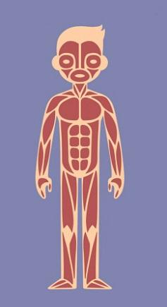 Trắc nghiệm: Chọn bộ phận cơ thể quan trọng nhất để khám phá cá tính của bạn - 1