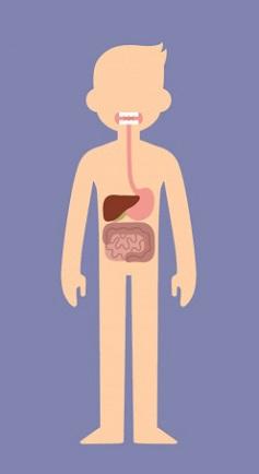 Trắc nghiệm: Chọn bộ phận cơ thể quan trọng nhất để khám phá cá tính của bạn - 4