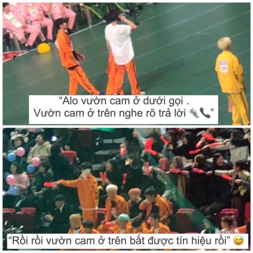 iKON, Seventeen khiến các fan đội quần tại đại hội thể thao ISAC 2019