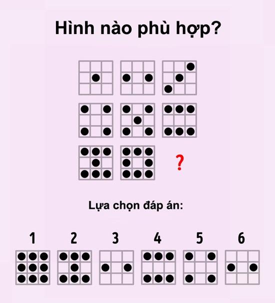 Xoắn não trả lời các câu đố IQ thú vị - 4