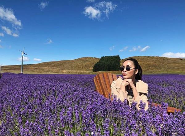 Hà Tăng khiến fan đua nhau ghen tỵ khi khoe ảnh sống ảo giữa đồng hoa lavender ở New Zealand.