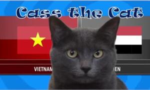 Mèo tiên tri ở Anh dự đoán trận Việt Nam gặp Yemen