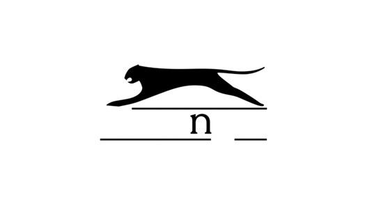 Nhận dạng chuẩn logo của các hãng thể thao - 9