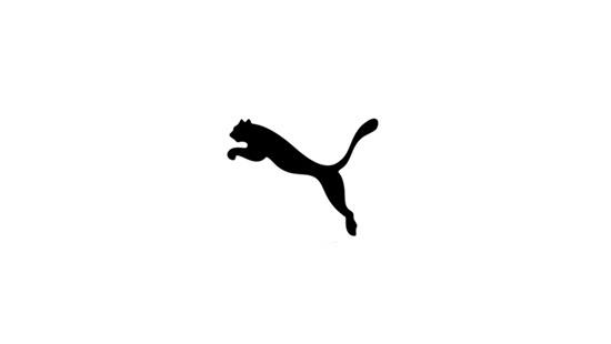 Nhận dạng chuẩn logo của các hãng thể thao - 5
