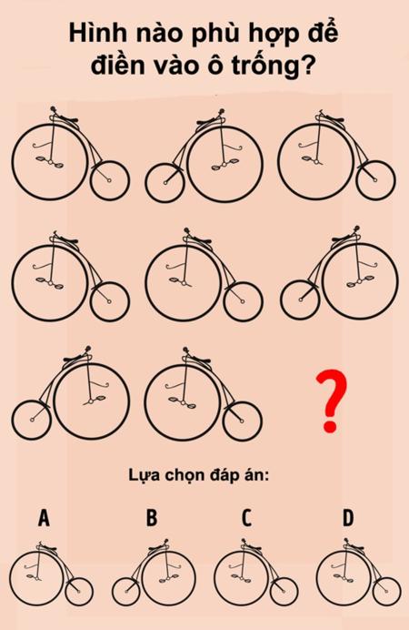 Xoắn não trả lời các câu đố IQ thú vị (2) - 4