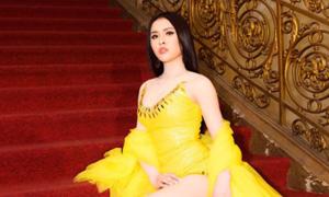 Những lần sao Việt bị tố bỏ tiền túi thuê fan cổ vũ
