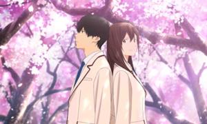 Buôn 'khăn giấy' trong rạp với anime 'Tớ muốn ăn tụy của cậu'