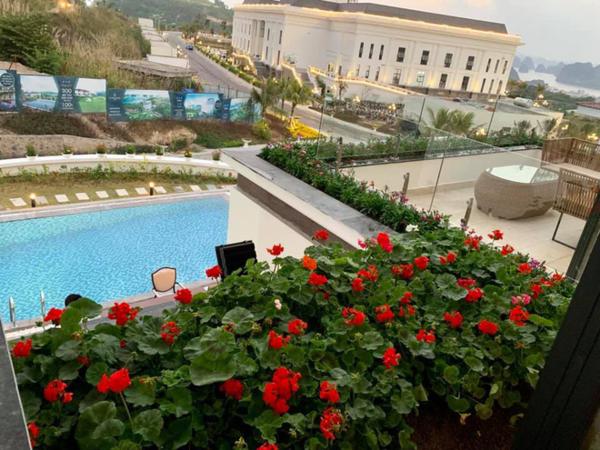 Không gian căn nhà được người đẹp trang trái bằng hoa tươi, cây cỏ, tạo không khí gần gũi với thiên nhiên.