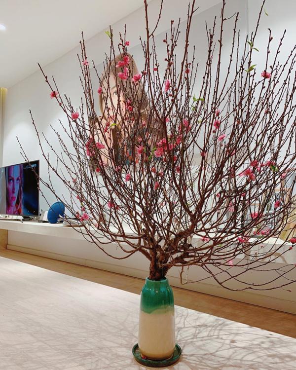 Trên Instagram, Thanh Hằng khoe cành đào mới sắm với những cánh đào nở rộ, rực rỡ sắc xuân. Cũng giống Đàm Vĩnh Hưng, Thanh Hằng sống tại miền Nam nhưng dành niềm yêu thích đặc biệt với cây đào miền Bắc.