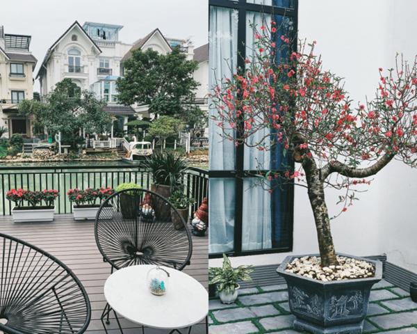 2019 là năm đầu tiên Tú Anh đón Tết ở nhà chồng. Nhà Tú Anh đặt mua nhiều chậu cây cảnh và cây đào với cánh hoa nở rộ trước thềm Tết Kỷ Hợi.