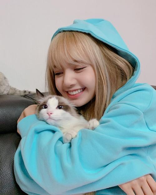 Lisa ôm ấp mèo cưng thắm thiết trong khi boss có vẻ không mấy mặn mà.