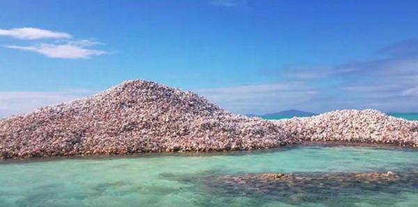 Đảo Conch là hòn đảo nhân tạo lớn nhất thế giới.