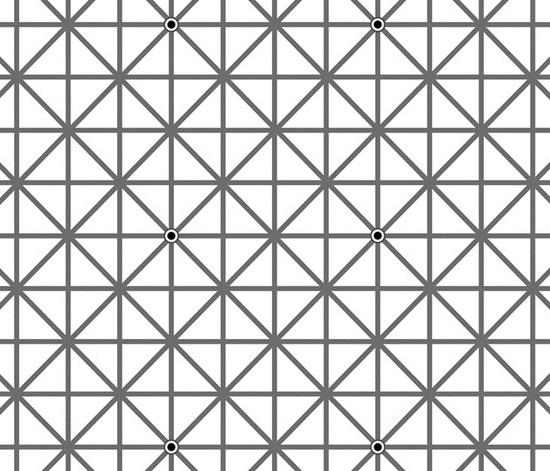 10 câu đố hại não đánh lừa thị giác người xem - 6